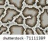 Python snake skin pattern - stock vector