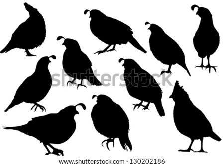 quail silhouette clip art - photo #12