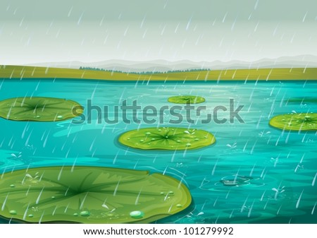 Raining on the lily pads - stock vector