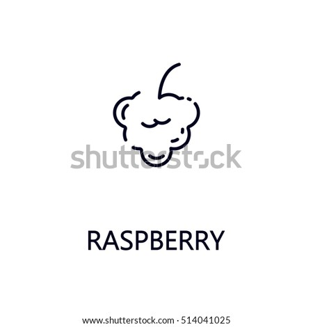 Raspberry Flat Icon Single High Quality Stock Vector ...