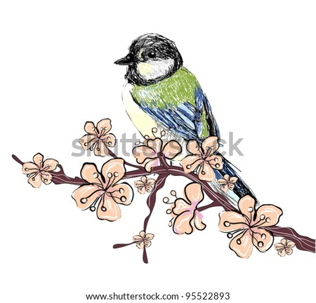 Realistic Cherry blossom, sakura and realistic sparrow free hand drawing on white background - stock vector