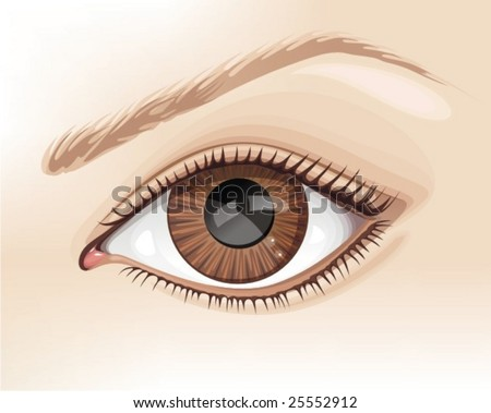 realistic eye - stock vector