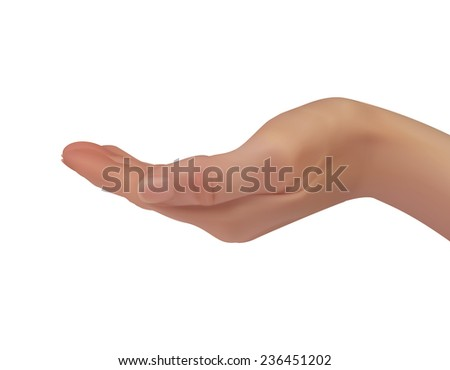 realistic female hand isolated on a white background, 3d, vector.