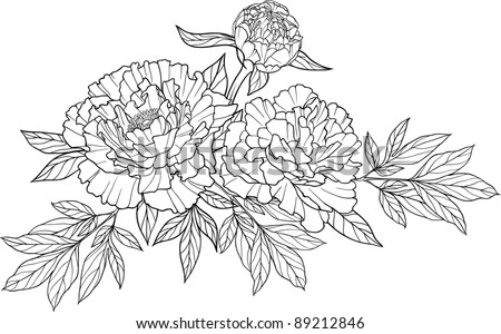 Thomas Telford At The 2007 Chelsea Flower Show I4170 moreover Seamless Floral Pattern Black And White Wallpaper With Curly Twigs 108170 Vector Clipart besides Stock Illustration Meadow Flowers additionally Pet Memorial Paw Print Shape With Silhouette further 069e4c832df176b7. on beautiful garden landscape design html