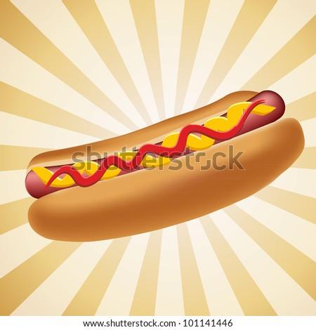 Realistic hot dog vector illustration - stock vector