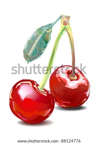 Realistic illustration of CHERRY with a fruit stem and leaf on white background.Two. Isolated. Shadow. Vector.
