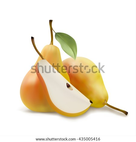 Realistic illustration of pears, a piece pears, pears with leaf, vector illsutration isolated on white background - stock vector