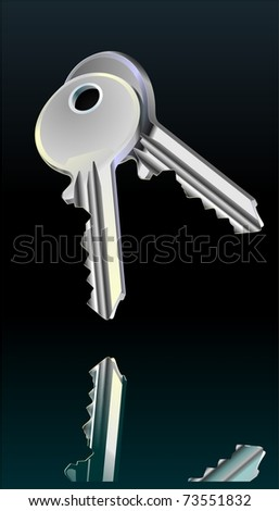 Realistic illustration of two door keys on black. Reflection. Chrome. Nickel. Vector. - stock vector