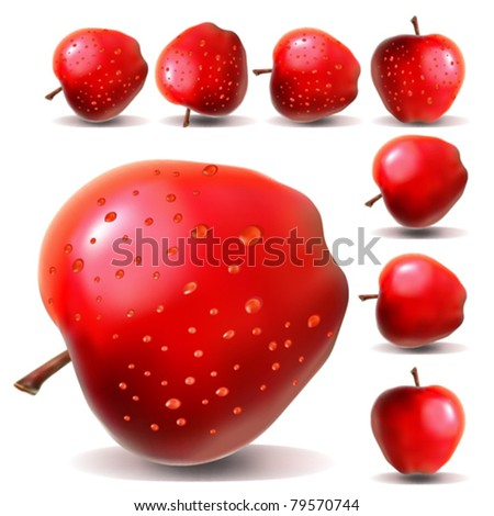realistic red apple in the drops of water in different positions - stock vector