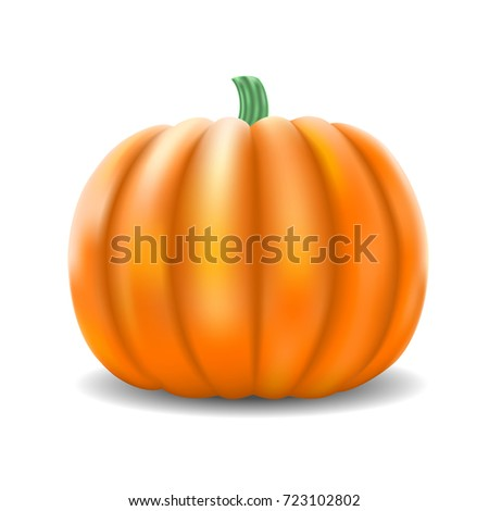 Realistic Vector Pumpkin Isolated on White Background. Big Ripe Orange Pumpkin with Shadow. Vector Illustration.