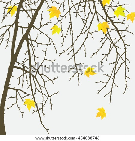 Realistic vector silhouette autumn tree for your design on the white background. Vintage hand drawn illustration with space for text - stock vector