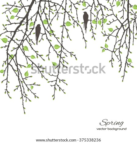 Realistic vector silhouette spring tree  and bird for your design on  the white background. Vintage hand drawn illustration with space for text - stock vector