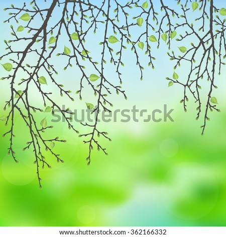 Realistic vector silhouette spring tree  for your design on  the blurred background. Vintage hand drawn illustration with space for text - stock vector