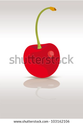 Red cherry isolated on white, vector illustration - stock vector
