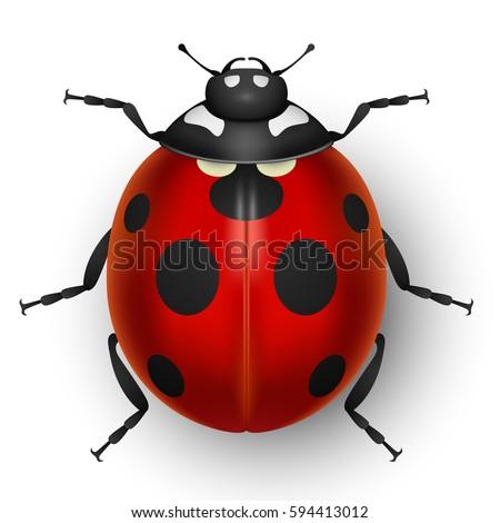 Tuulijumala S Portfolio On Shutterstock