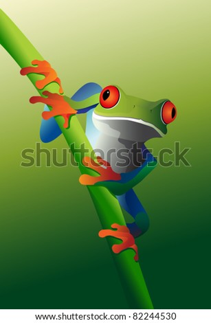 Red Eyed Tree Frog on vine - stock vector