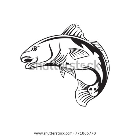 red fish vector logo stock vector 771885778 shutterstock rh shutterstock com Redfish Tail Hat redfish tail clipart