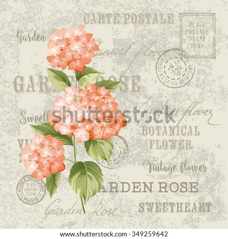 Red flowers design for invitation card template. Vintage postcard background vector template for wedding invitation. Label with hortensia flowers. Vector illustration.