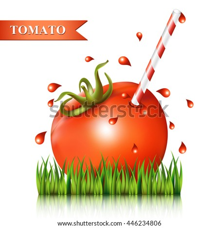 Red fresh tomato with straw on the grass isolated on white. Vector illustration. - stock vector