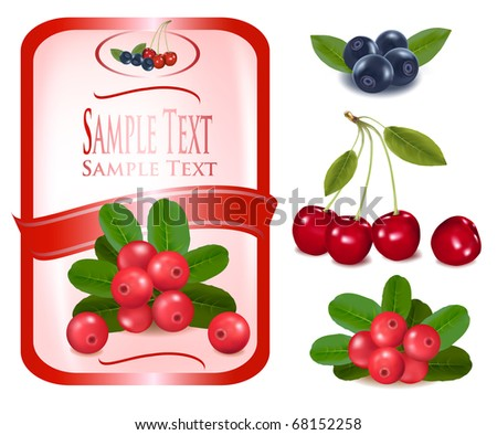 Red label with berries. Vector. - stock vector