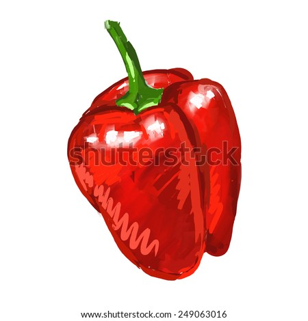 red pepper Vector illustration  hand drawn  painted watercolor  - stock vector