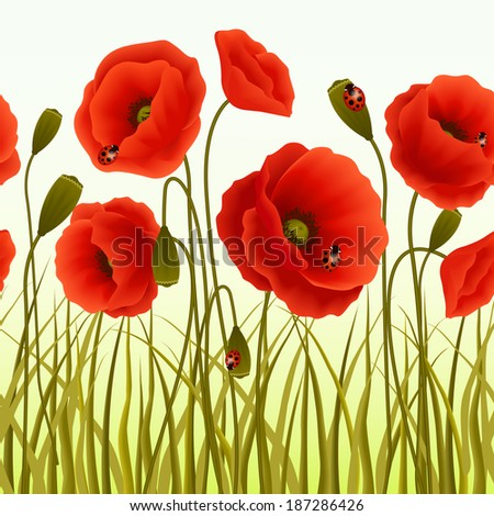 Red romantic poppy flowers and grass with ladybugs wallpaper vector illustration. - stock vector