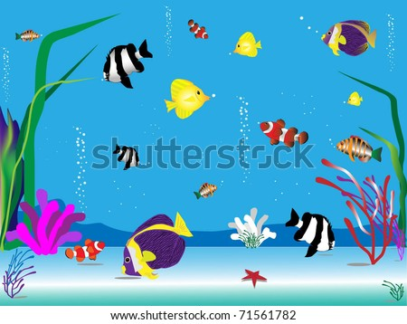 Red sea fishes - stock vector