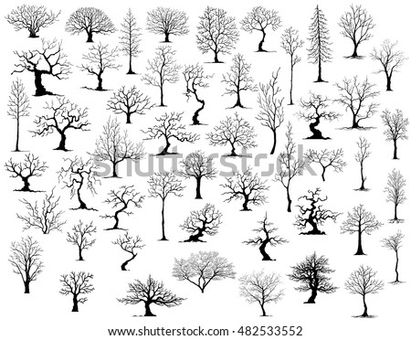 ree on white background,Vector trees in silhouettes.Create many more trees with leaves and bare trees on the bottom,Set of abstract trees,Green Oak,tree with a realistic
