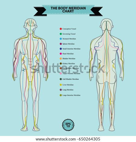 Reflexology Body Diagram Trusted Wiring Diagram