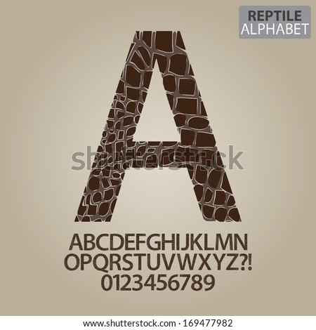 Reptile Skin Alphabet and Numbers Vector - stock vector