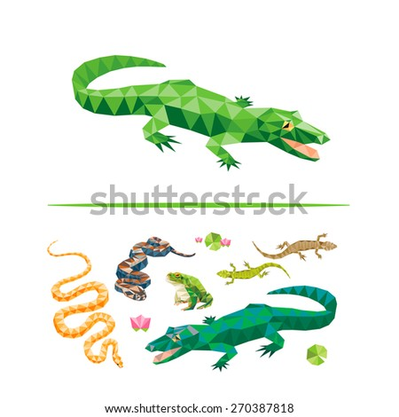 reptiles color design geometric collection crocodile stock vector rh shutterstock com Half-Lizard Frog Have Budweiser Screensaver Lizards Frogs