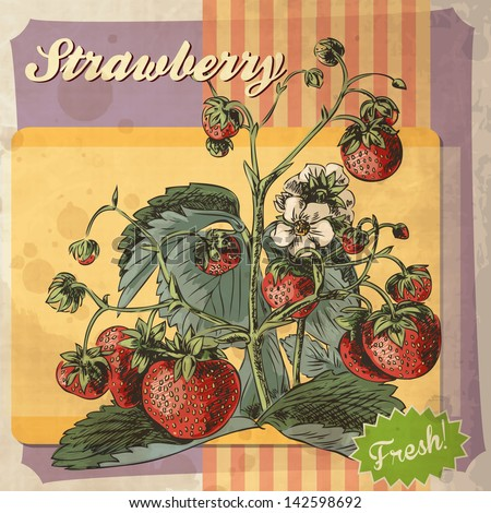 Retro card design with strawberry - stock vector