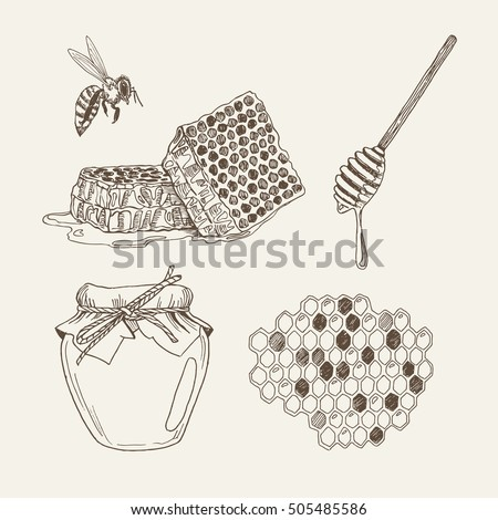 how to draw a bee honeycomb