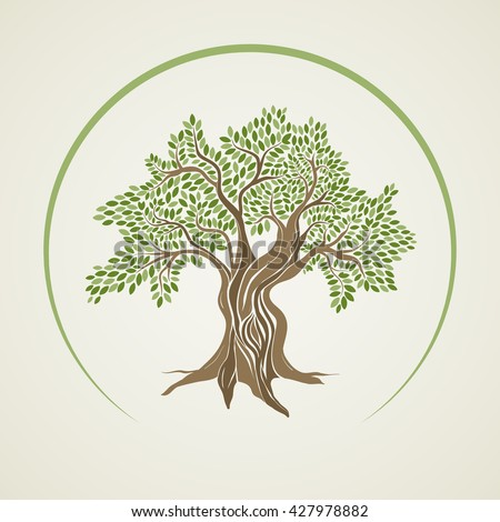 Retro style olive tree vector illustration. - stock vector