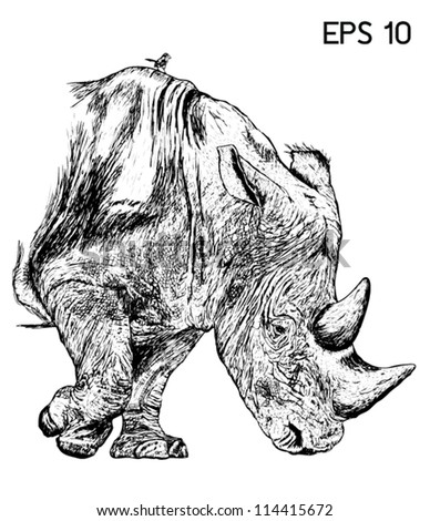Rhino drawing with EPS 10 Vector - stock vector