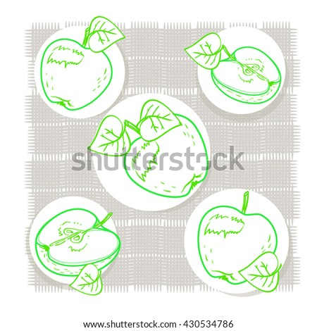 Ripe apples and Apple half, illustration in vector. Beautiful, delicious, realistic, and organic apples for design and execution. Vector watercolor retro art set. Green diet. - stock vector