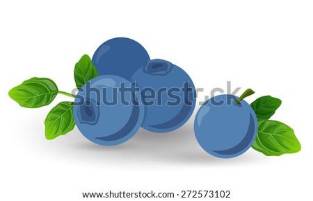 ripe fresh blueberries on a white background - stock vector