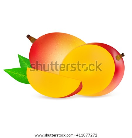 Ripe fresh mangoes with slice isolated on white background. Realistic vector illustration. - stock vector