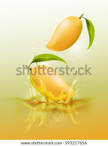 ripe mango drop on juice splash and ripple, Realistic Fruit and yogurt, transparent, vector illustration