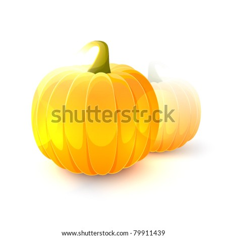 Ripe pumpkin fruits isolated on white background - stock vector