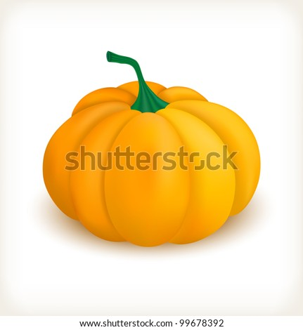 Ripe pumpkin vegetable on white background - stock vector