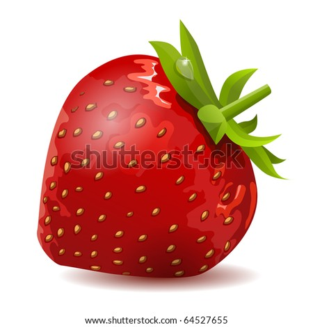 Ripe strawberry isolated on white background - stock vector