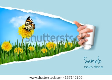 Ripped paper background with dandelions field a butterfly. Vector. - stock vector
