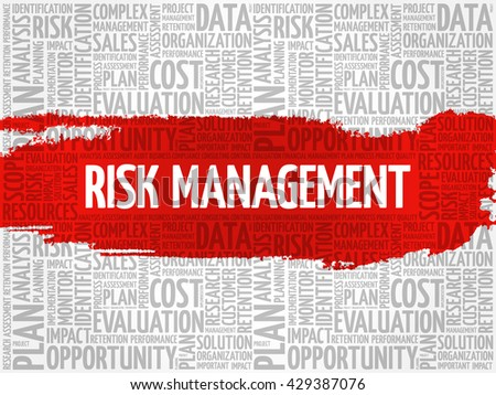 Risk Management word cloud, business concept - stock vector