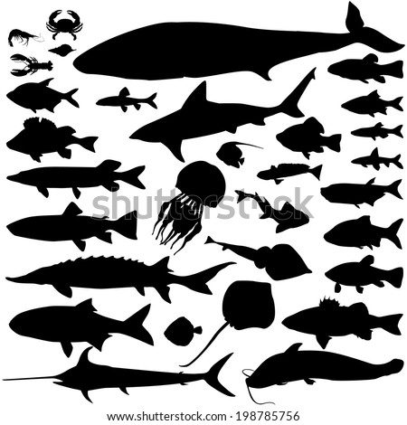 River and sea fish silhouette set. Marine fish and mammals. Sea food icon collection.  - stock vector