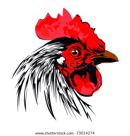 Rooster crowing in the morning Stock Photos  Illustrations  and Vector