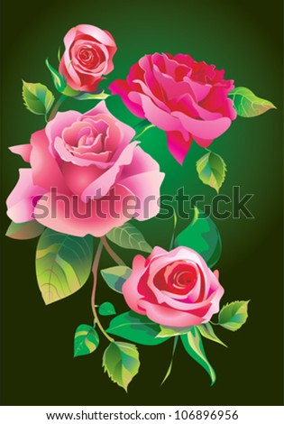 rose - stock vector