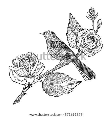 Rose Branch Bird Coloring Book Page Stock Photo (Photo, Vector ...
