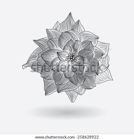 Rose Flower Elements for design, EPS10 Vector background - stock vector
