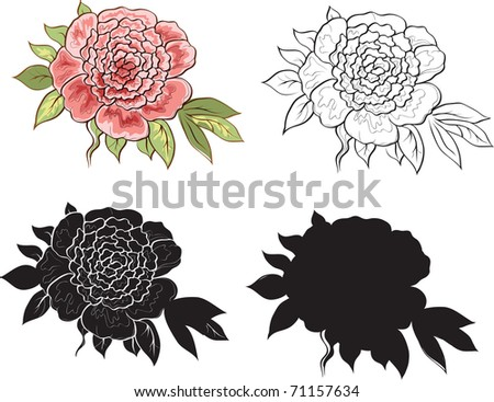 rose isolated on white background - stock vector